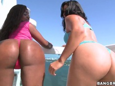 Sweet booty latinas Candy and Diamond Mason tease the public!